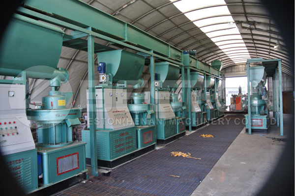 Beston Pellet Making Machine in America with Good Quality